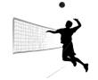 volleyr
