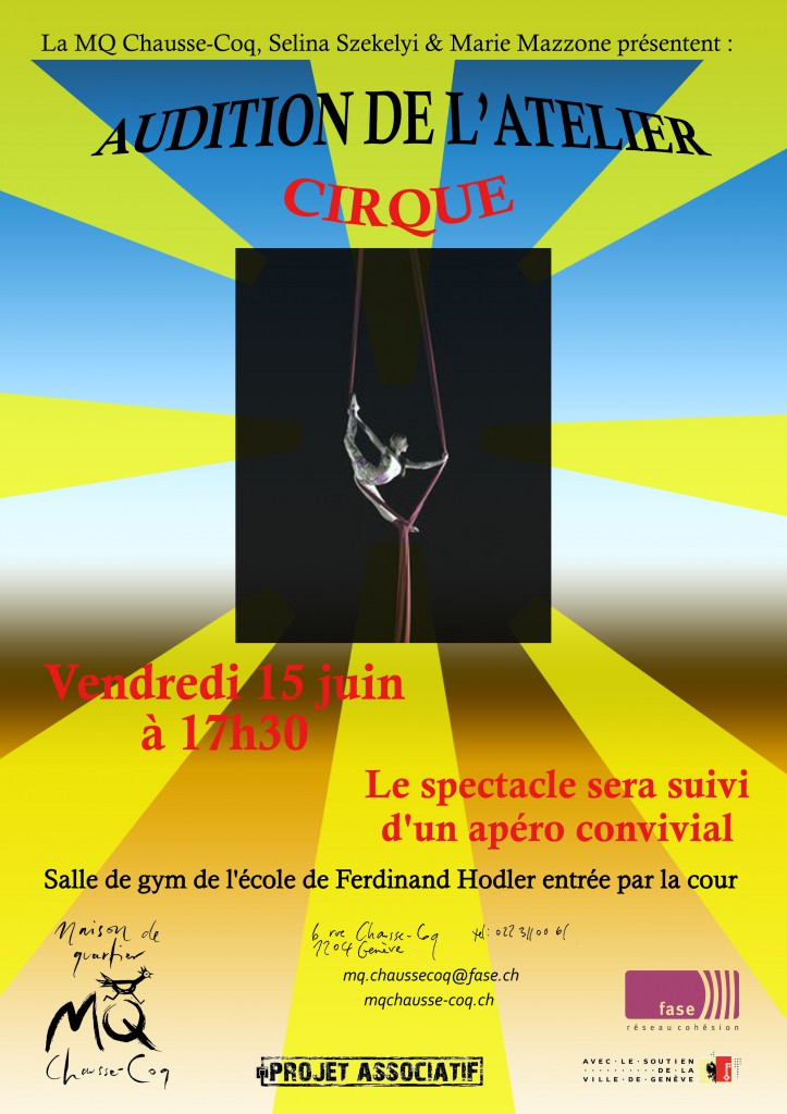Pub audition cirque2018